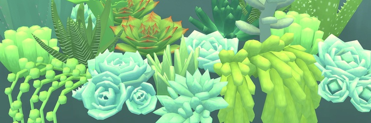 Succulents in light green